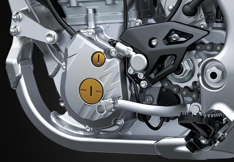 The Kawasaki Look