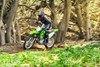 Profile angle of person riding a motorcycle on a forest trail.